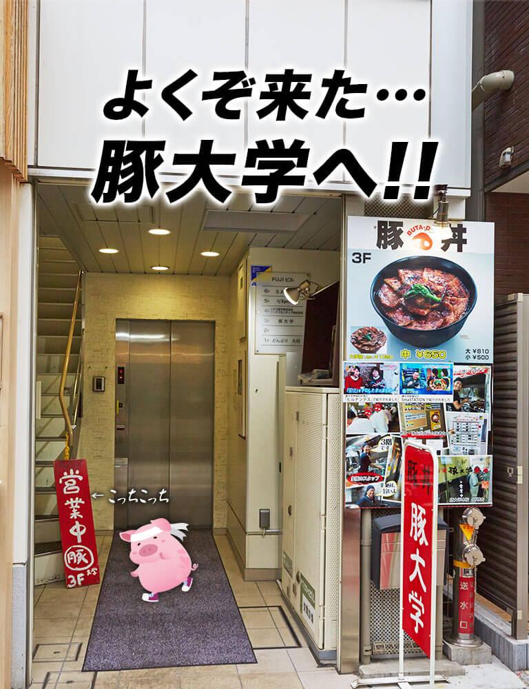 よくぞ来た…豚大学へ!